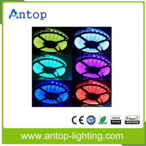 High Output Lumen & Color Changeable RGB LED Strip pictures & photos