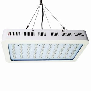 Plants Seeding High Power LED Grow Lights with Ce Approved pictures & photos