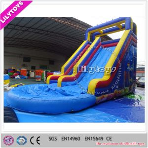 Outdoor Cheap Inflatable Water Slide with Pool for Sale pictures & photos
