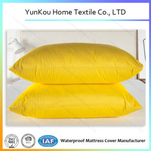 Multicolor Antidustmite Knitted Pillow Case for Decoration and Daily Use pictures & photos