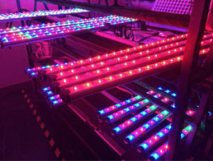 18W Waterproof LED Grow Light Bar (60cm) pictures & photos