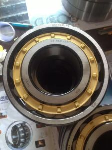 Full Complement Bearings SL045014PP Double Row Cylindrical Roller Bearings pictures & photos