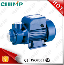 China 0.5HP Small Electric Home Clean Vortex Water Pump 220V/120V pictures & photos