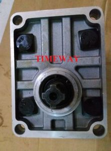 Hydraulic Gear Pump CBN-E320-Cfhr High Pressure Oil Pump pictures & photos
