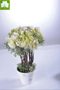 Rose and Hydrangea Tree  in Pulp Pot for Promotion