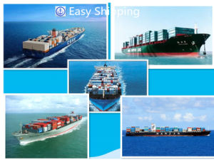 Consolidate Shipping Cargo From China to South America Logistics pictures & photos