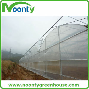 Tunnel Plastic Arch Greenhouse, Vegetable Production Greenhouses China, Commercial Greenhouse China pictures & photos