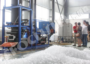 Fit-80 8ton Tube Ice Machine pictures & photos