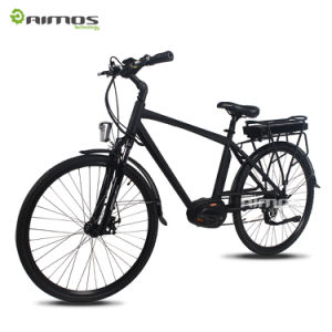 City MID Drive 350W Electric Bike with Rear Rack Battery pictures & photos