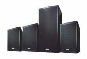 Ex25 Dual 15′′ Good Saleing Audio Speaker (TACT) pictures & photos