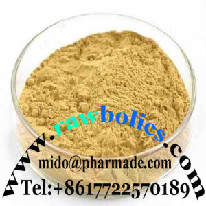 Pharmaceutical Dendrobine Raw Powder Use for Medicine pictures & photos