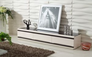 Living Room Furniture Modern TV Stand (DS-147) pictures & photos