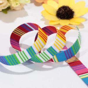 Color Printed Flat 1 Inch Nylon Webbing Fot Clothing pictures & photos