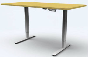 Electric Ergonomic Office Height Adjustable Desk/Lift Desk/Standing Desk with Two Motors (ET102) pictures & photos