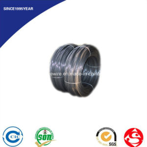 DIN 17223 Grade a B C D Black Annealed Iron Wire pictures & photos