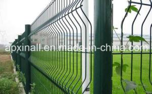 Malla Electrosoldada Plastificada Verde 3D PARA Cercos Fence pictures & photos