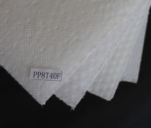 Light Weight Waterproof PP Honeycomb Panel pictures & photos