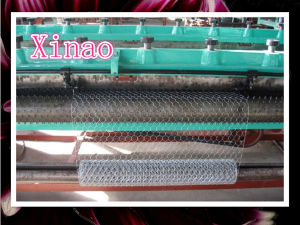 Xinao Triple Torsion Mesh of 13mm X1m and 0.7mm Thick Galvanize pictures & photos