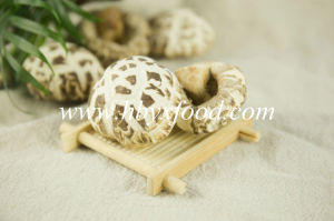 Dehydrated Flower Shiitake Mushroom Dried Vegetable pictures & photos