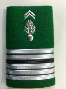 Army Rank Badges pictures & photos