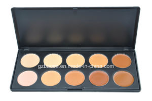 Wholesale! ! Professional 10 Color Concealer Palette