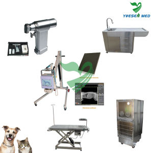 Yuesenmed Veterinary Hospital Medical Stainless Steel Pet Crate pictures & photos