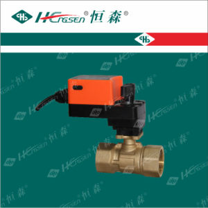 Motorized Ball Valve/Brass Motorized Ball Valve with Actuator pictures & photos