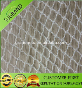 New Design Bird Net Mesh for Sale pictures & photos