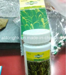 Natural Herbal Hoodia Gordonii Kalahari Weight Loss Capsules pictures & photos
