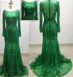 Long Sleevem Lace Muslim Evening Dresses for Istanbul pictures & photos