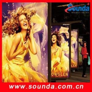 Super Quality for 500*300d Backlit PVC Flex Banner pictures & photos