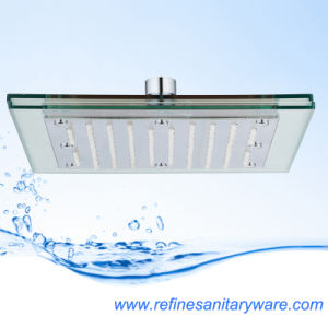 Popular Waterfall Shower Head From China (RN147N) pictures & photos