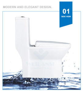 Weidansi Ceramic Siphonic S-Trap One Piece Toilet (WDS-T6118) pictures & photos