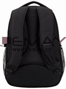 Basics Laptop Backpack - Fits up to 17-Inch Notebook Computer/Slim Laptop pictures & photos