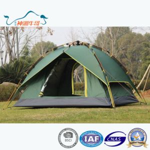 Hot Sale Fiberglass Pole Outdoor Camping Creving Tent