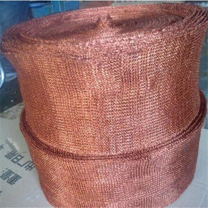 China Seasonal Discount Roll 1X30m Copper Mesh pictures & photos