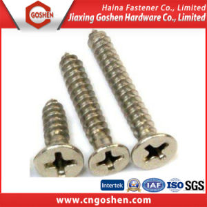 High Quality Stainless Steel Cross Chipboard Self Tapping Screw pictures & photos