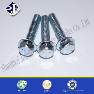 Ts16949 Flange Bolt with Blue Zinc 8.8 pictures & photos