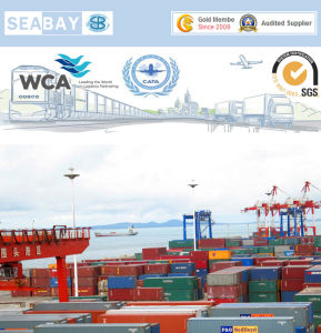 Shanghai Professional Container Shipping Service to Bremerhaven pictures & photos