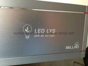 Laser Steel Engraving Machine/Steel Laser Etcher/Laser Stamp Machine pictures & photos
