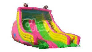 Cheap Commercial Inflatable Cartoon Slide for Amusement Park CB277 pictures & photos