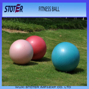Factory Anti Burst Custom Color 65cm Ecofriendly PVC Body Sport Fitness Ball