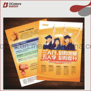 Custom Leaflet Printing for Flyers or Brochure Printing pictures & photos