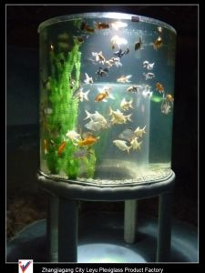 Giant Various Round Acrylic Fish Tank pictures & photos