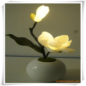 Giolia LED Artificial Flowers with Ceramics Pot for Promotion pictures & photos