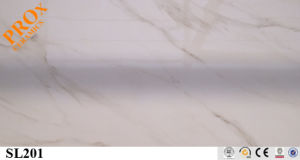 Polished Porcelain Tile, Ceramic Wall and Floor Tile Promote