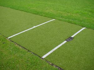 12mm Height Artificial Grass for Cricket Ground
