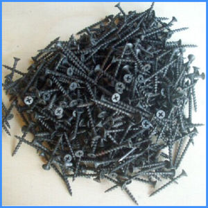 Black and Gray Phosphatized Drywall Screw pictures & photos