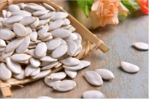 Hot Sale Snow White Pumpkin Seed New Crop pictures & photos