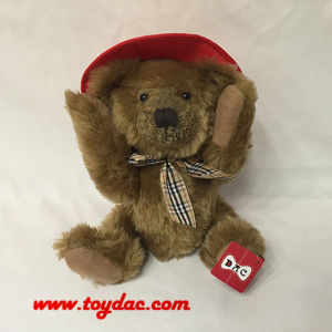 Plush USA Hat Teddy pictures & photos